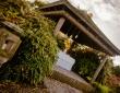(New Hotel) Gardens (21 of 40)