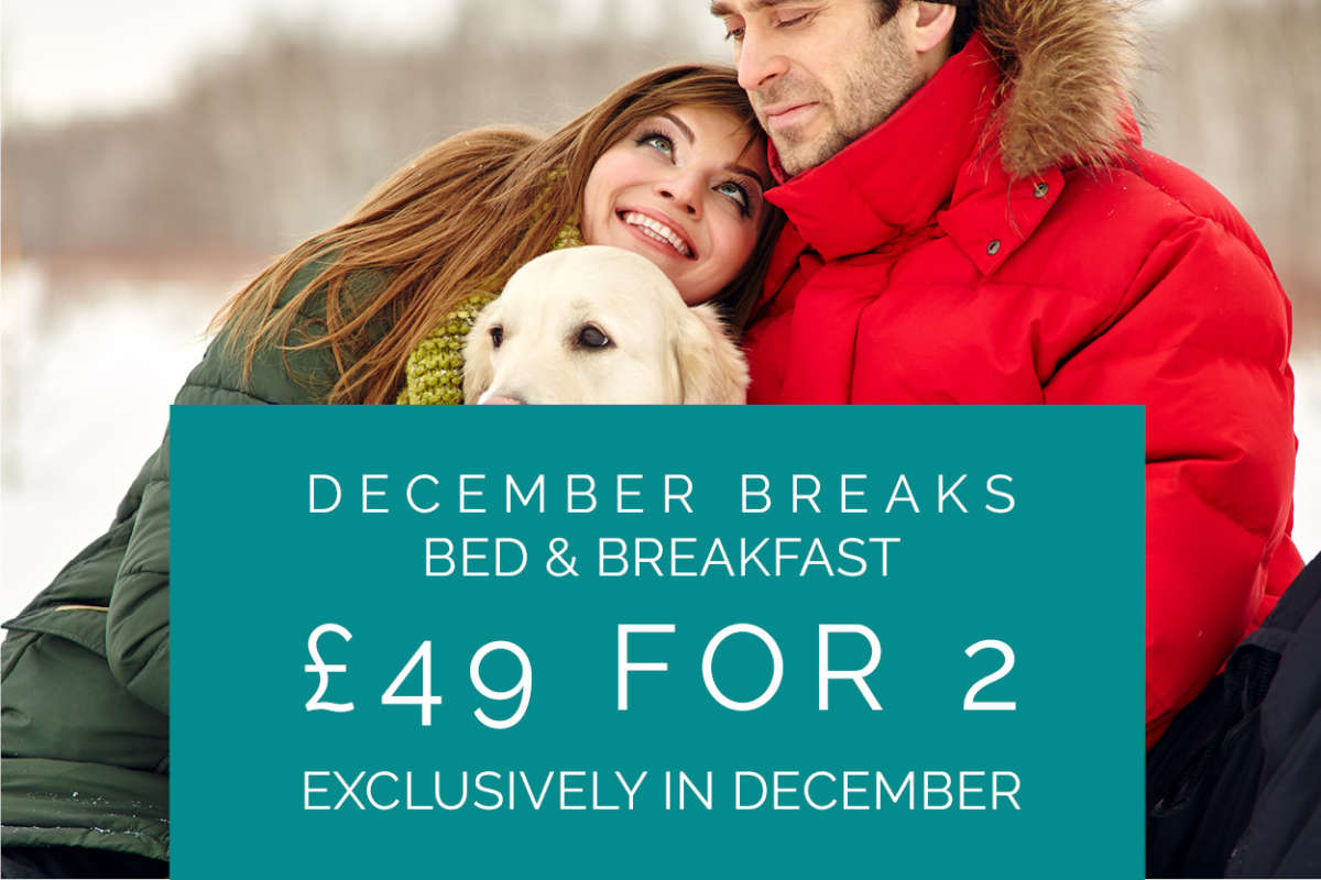 December Breaks £49 B&B for 2